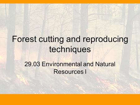 Forest cutting and reproducing techniques 29.03 Environmental and Natural Resources I.