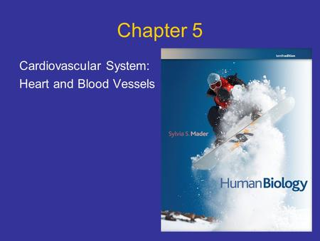 Chapter 5 Cardiovascular System: Heart and Blood Vessels.