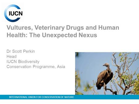 INTERNATIONAL UNION FOR CONSERVATION OF NATURE Vultures, Veterinary Drugs and Human Health: The Unexpected Nexus Dr Scott Perkin Head IUCN Biodiversity.