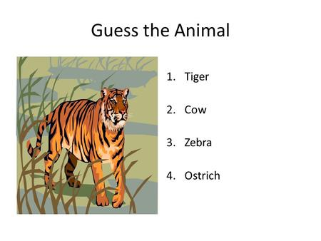 Guess the Animal 1.Tiger 2.Cow 3.Zebra 4.Ostrich.