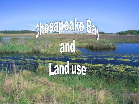 Chesapeake Bay and Land Use. Land Use Issues in Bay Watershed Herbicides and Pesticides Herbicides and Pesticides Fertilizer Fertilizer Sediment Runoff.