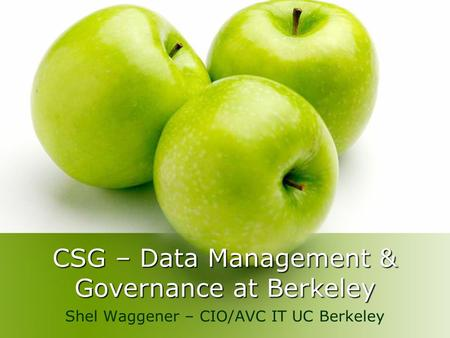 CSG – Data Management & Governance at Berkeley Shel Waggener – CIO/AVC IT UC Berkeley.