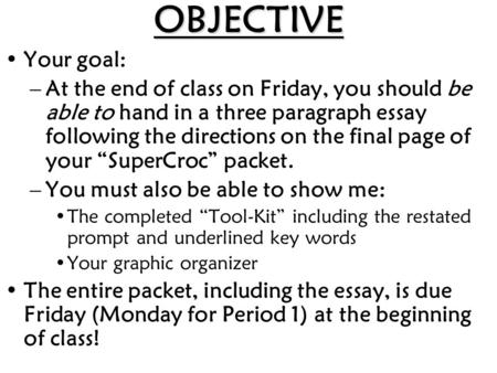 OBJECTIVE Your goal: –At the end of class on Friday, you should be able to hand in a three paragraph essay following the directions on the final page of.