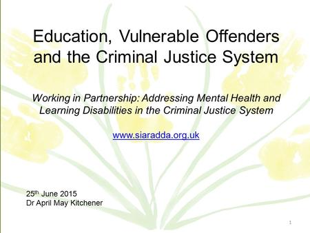 ©AMK 2015 Education, Vulnerable Offenders and the Criminal Justice System Working in Partnership: Addressing Mental Health and Learning Disabilities in.