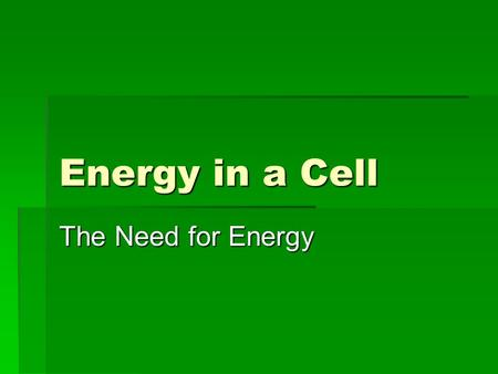 Energy in a Cell The Need for Energy. Cell Energy Autotrophs – make their own food Heterotrophs must get energy from consuming other organisms.