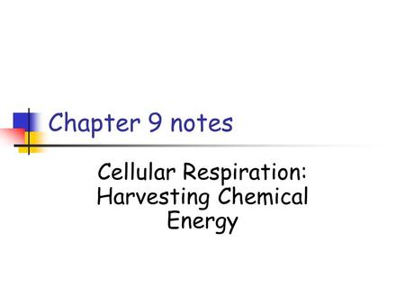 Chapter 9 notes Cellular Respiration: Harvesting Chemical Energy.