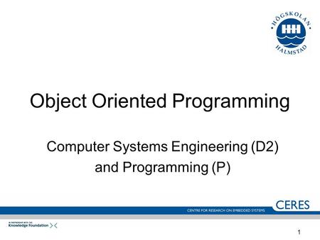 1 Object Oriented Programming Computer Systems Engineering (D2) and Programming (P)