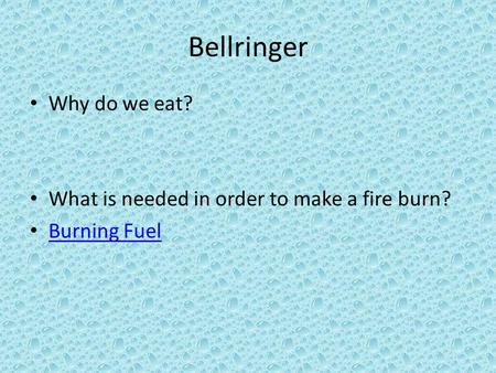Bellringer Why do we eat? What is needed in order to make a fire burn?