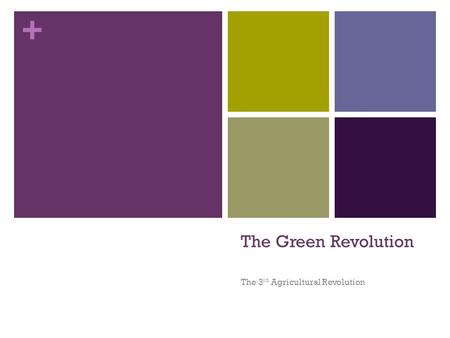 + The Green Revolution The 3 rd Agricultural Revolution.