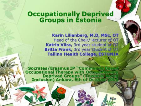 Occupationally Deprived Groups in Estonia Karin Lilienberg, M.D, MSc, OT Head of the Chair/ lecturer of OT Katrin Viira, 3rd year student of OT Britta.