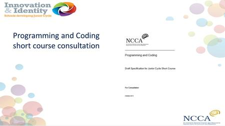 Programming and Coding short course consultation.