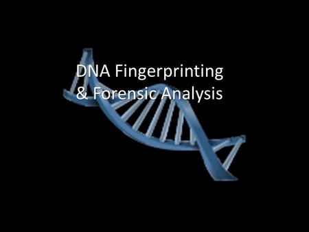 DNA Fingerprinting & Forensic Analysis. How is DNA Typing Performed? Only one-tenth of 1% of DNA differs in each person; this variation can create.