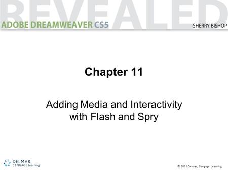© 2011 Delmar, Cengage Learning Chapter 11 Adding Media and Interactivity with Flash and Spry.