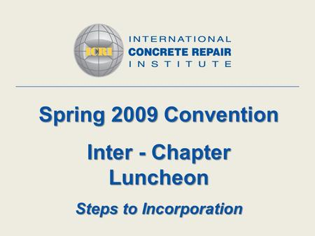 Spring 2009 Convention Inter - Chapter Luncheon Steps to Incorporation.