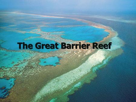 The Great Barrier Reef. Basic Facts Located off Northeastern Australia Located off Northeastern Australia 1,240 miles long 1,240 miles long More than.