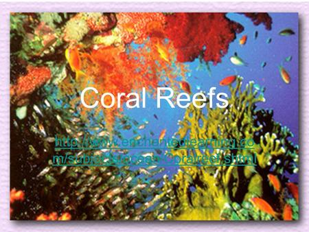 Coral Reefs http://www.enchantedlearning.com/subjects/ocean/Coralreef.shtml.