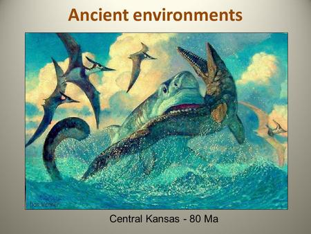 Ancient environments Central Kansas - 80 Ma. Setting the Stage: Major Erosional/Depositional 'Provinces'