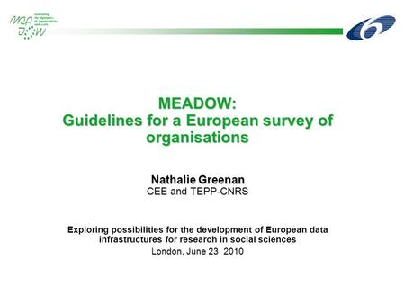 MEADOW: Guidelines for a European survey of organisations Nathalie Greenan CEE and TEPP-CNRS Exploring possibilities for the development of European data.