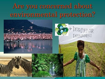 Are you concerned about environmental protection?.