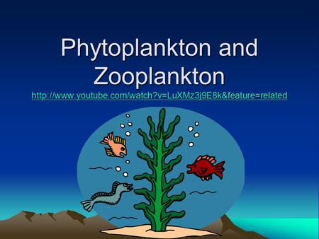Phytoplankton and Zooplankton  youtube. com/watch