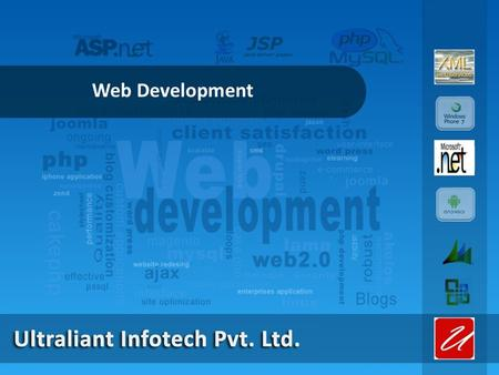 Web Development. BUSINESS & CUSTOMER SEGMENTS Customers in Government Sector Proficient in MLM Software Web based Solution for any Application Expertise.