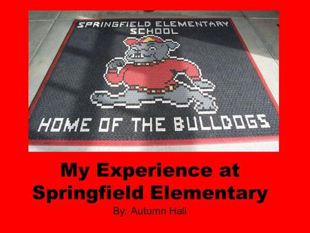 My Experience at Springfield Elementary By: Autumn Hall.