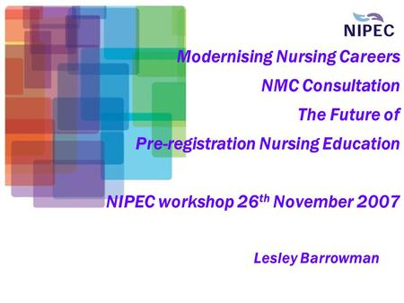 Modernising Nursing Careers NMC Consultation The Future of Pre-registration Nursing Education NIPEC workshop 26 th November 2007 Lesley Barrowman.