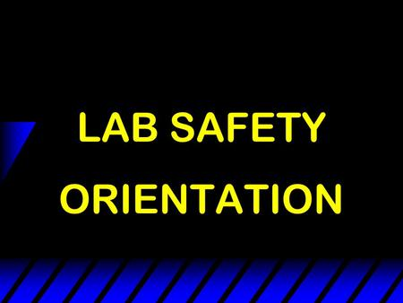 LAB SAFETY ORIENTATION Safety Means - - No Accidents.