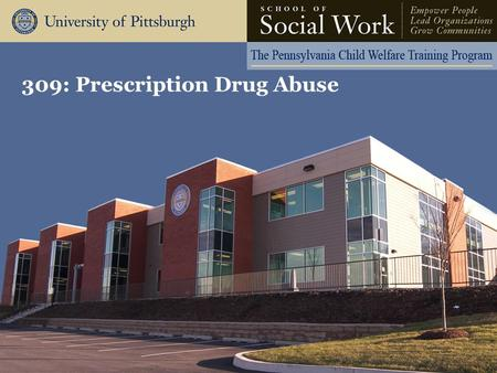 309: Prescription Drug Abuse. The Pennsylvania Child Welfare Resource Center Learning Objectives Participants will be able to: –Associate the history.