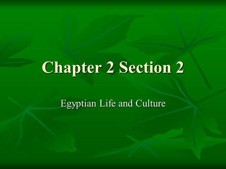 Chapter 2 Section 2 Egyptian Life and Culture. Review section 1 What Direction does the Nile river flow? What Direction does the Nile river flow? Why.
