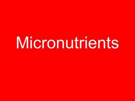 download kitchen capitalism microenterprise in low income