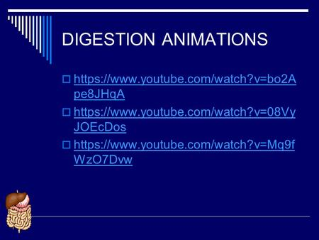 DIGESTION ANIMATIONS https://www.youtube.com/watch?v=bo2Ape8JHqA