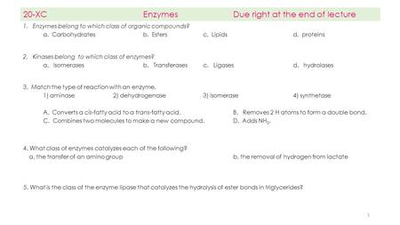 20-XC Enzymes Due right at the end of lecture