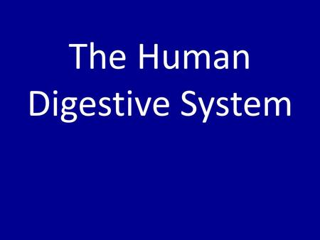 The Human Digestive System. Chemical Digestion of Food Use the following words to label the diagram (in boxes): – Triglyceride – Monosaccharides – Amino.
