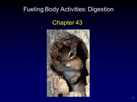 1 Fueling Body Activities: Digestion Chapter 43. 2 Outline Types of Digestive Systems – Vertebrate Digestive Systems  The Mouth and Teeth  Esophagus.
