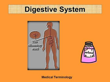 Digestive System Medical Terminology. Structures Lips (cheil/o) Mouth (stomat/o0 Tongue (gloss/o; lingu/o) Salivary glands –Sublingual –Submandibular.