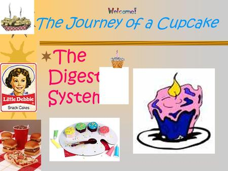 The Journey of a Cupcake