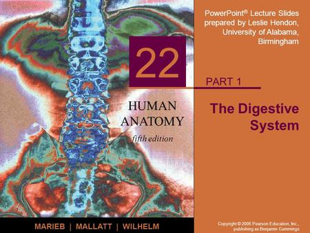 PART 1 The Digestive System.