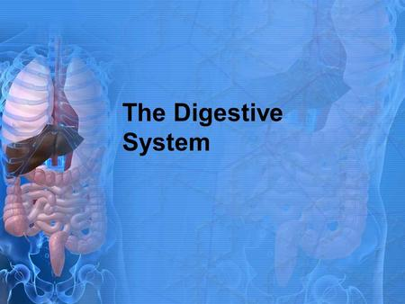 Anatomy and physiology chapter 21 digestive system i ii ppt the digestive system toneelgroepblik Images