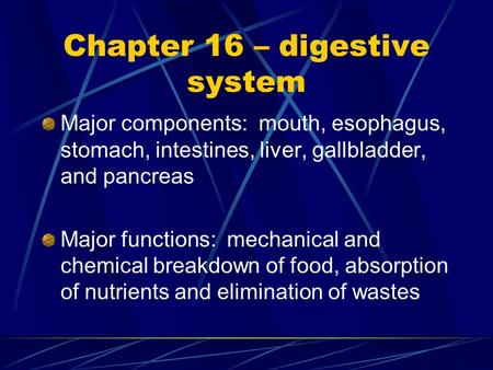 Chapter 16 – digestive system Major components: mouth, esophagus, stomach, intestines, liver, gallbladder, and pancreas Major functions: mechanical and.