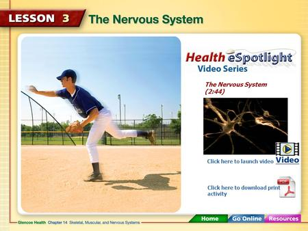 The Nervous System (2:44) Click here to launch video Click here to download print activity.