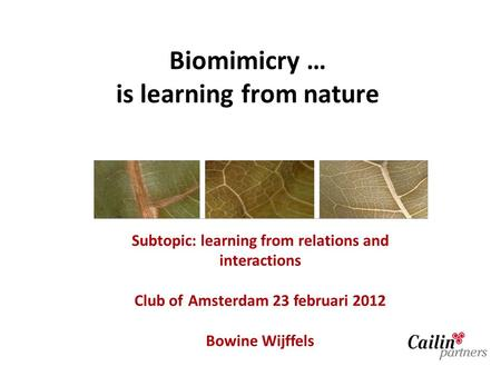Biomimicry … is learning from nature Subtopic: learning from relations and interactions Club of Amsterdam 23 februari 2012 Bowine Wijffels.