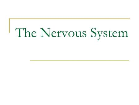 The Nervous System. The Nervous System: Chief control system; voluntary or involuntary Responds to changes in/out of body 100 Billion cells throughout.