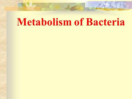 Metabolism of Bacteria By Ms.Patchanee Yasurin 471-9893 Faculty of Biotechnology Assumption Univerity.