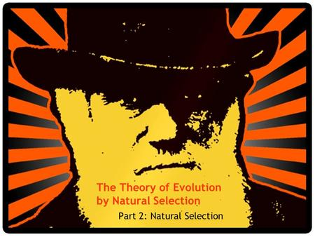 The Theory of Evolution by Natural Selection Part 2: Natural Selection.