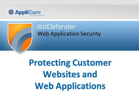 Protecting Customer Websites and Web Applications Web Application Security.