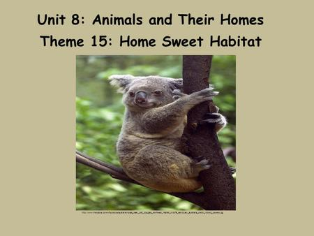 Unit 8: Animals and Their Homes Theme 15: Home Sweet Habitat