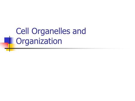 Cell Organelles and Organization. What to consider? Prokaryote- organisms that lack nuclei (bacteria) Eukaryote- organisms with a nuclei (plants and animals)