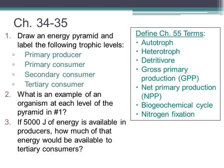 Ch. 34-35 1.Draw an energy pyramid and label the following trophic levels: ▫ Primary producer ▫ Primary consumer ▫ Secondary consumer ▫ Tertiary consumer.