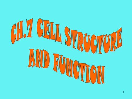 CH.7 CELL STRUCTURE AND FUNCTION.